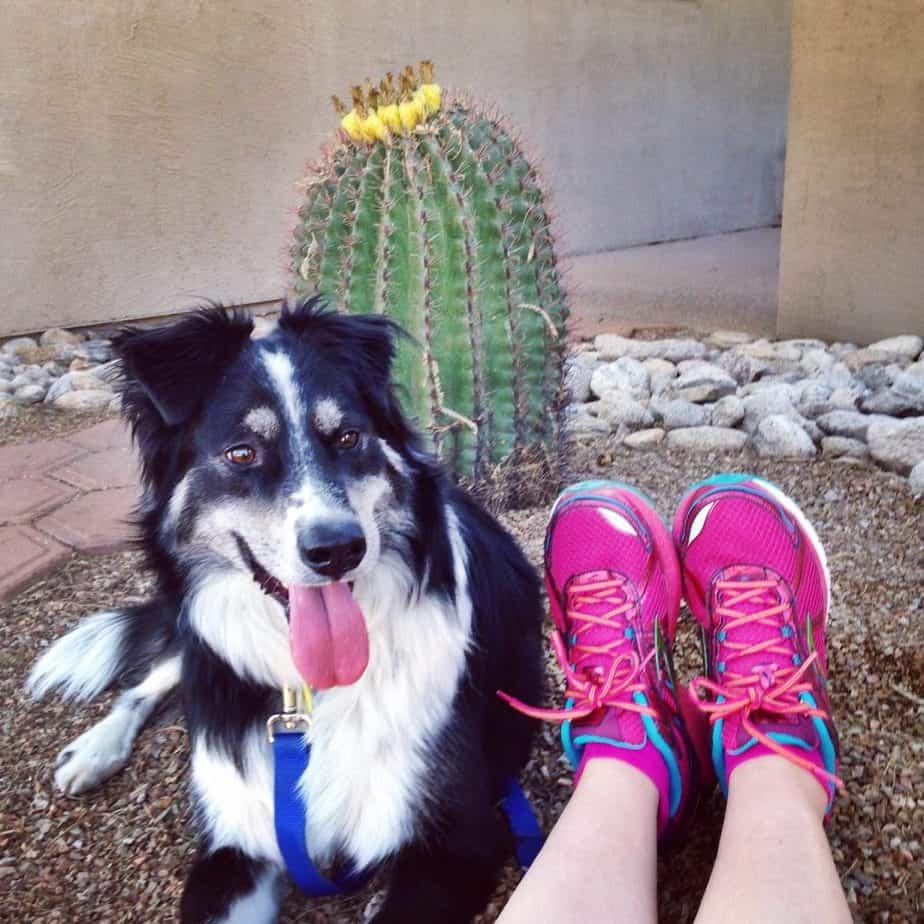 Half Marathon Training – Week 6