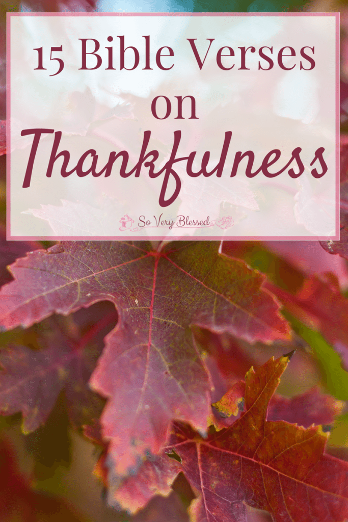15 Bible Verses On Thankfulness