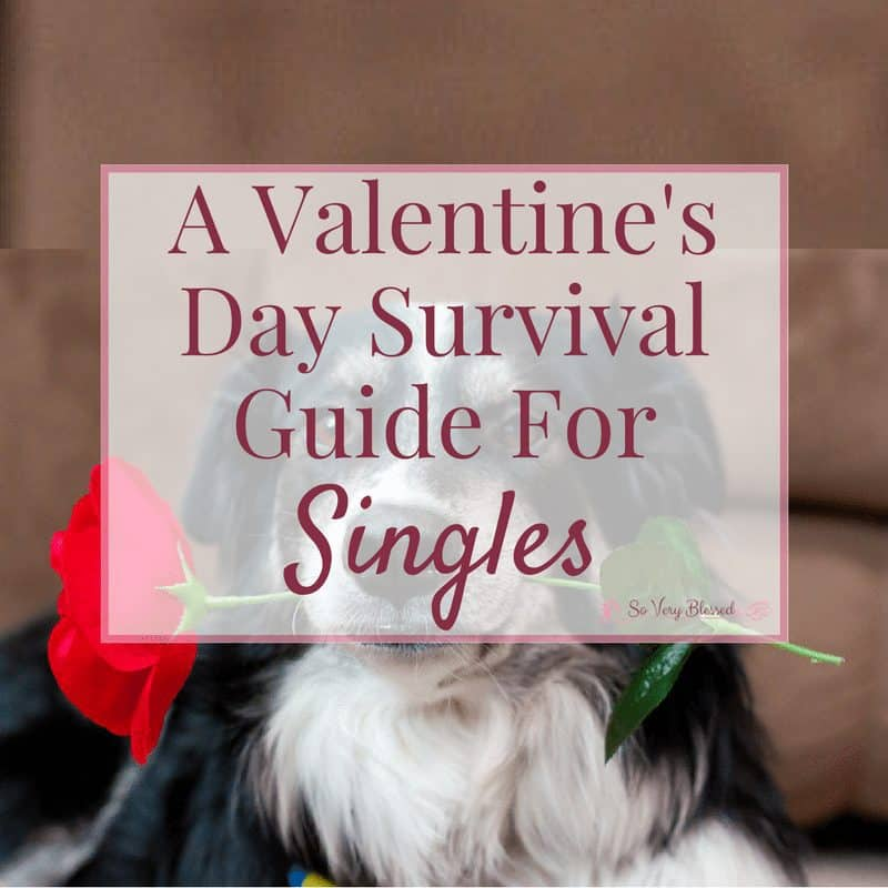 A Valentine's Day Survival Guide For Singles