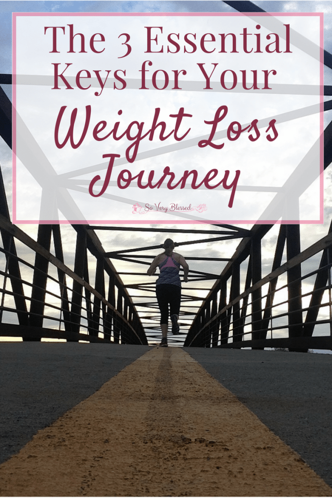 There are 3 essential keys to finding success in your weight loss journey and I am super excited to be able to bring them together and offer them to you!