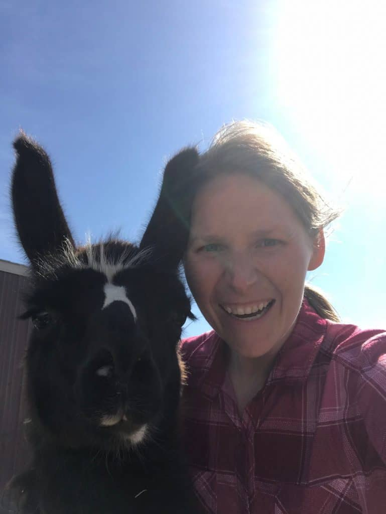 Kissing llamas, definitely not trail horses, the best Mother's Day dinner ever, a pathetic (& smelly) border collie, my rockhound almost-husband, and an adorable preschool graduation.