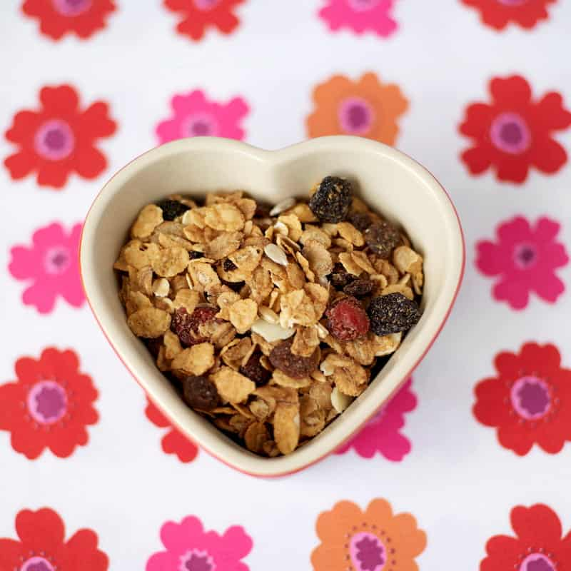 Bowl of oats with dried berries