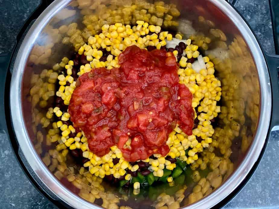 Salsa topping other ingredients layered in Instant Pot